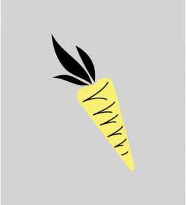 Illustration Möhre